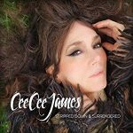 Cee Cee James Stripped Down & Surrendered